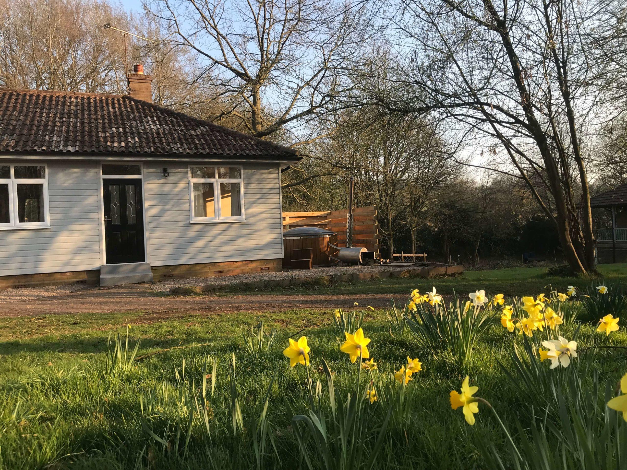 Cottage sat behind flowers